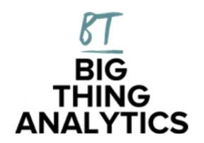 Big Thing Analytics